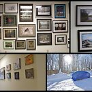 Which is best - portable garage or art gallery show by MotherNature