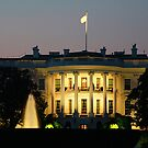 The White House at night by Maureen Clark
