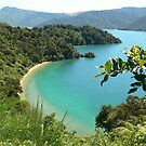 Queen Charlotte Sound by Larry Lingard-Davis