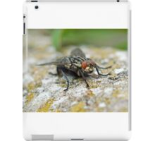 Macro Fly iPad Case/Skin