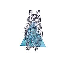 The Owls  Photographic Print