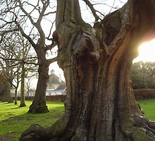 Greenwich - England by darrenjc