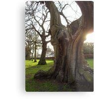 Greenwich - England Metal Print
