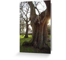 Greenwich - England Greeting Card