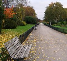 Regents Park - England by darrenjc