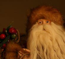 Santa by Julie Beitzel