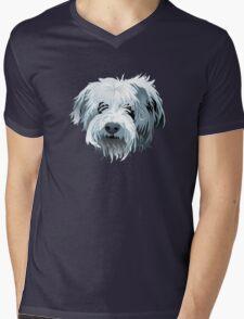 Beau Mens V-Neck T-Shirt