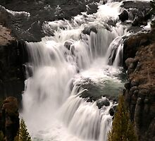 Lower Mesa Falls by Anibal