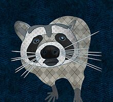 Raccoon by Janet Carlson
