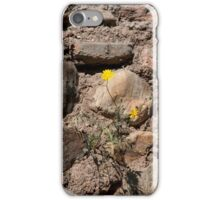 A Slice Of Life..... iPhone Case/Skin