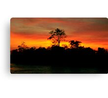 Sunrise on the Amazon River, Brazil Canvas Print
