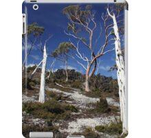 Ghost Gums iPad Case/Skin