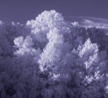 Infrared Tree 2 Sticker