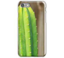 Cactus plants iPhone Case/Skin