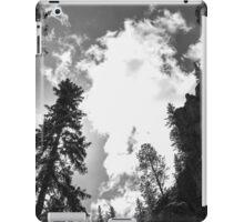 The Black and White Sandias iPad Case/Skin
