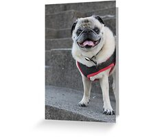 Happy to see you Greeting Card