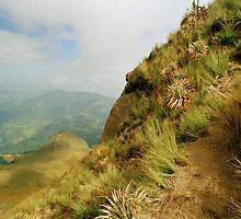 Volcano Fuya Fuya, Andes, Ecuador by Paris Lee