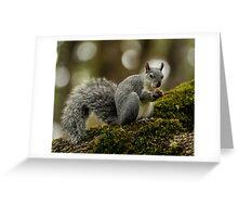 Gray Pose Greeting Card