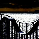 Rollercoaster. by Paul Rees-Jones