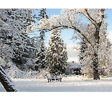 Winter wonderland! Photographic Print