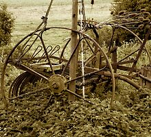 Old farming equipment by newbeltane