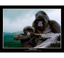 """Precious"" (Mountain Gorillas) Photographic Print"