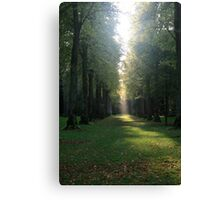 Autumn Sunbeam Canvas Print