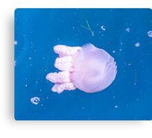 Jellyfish:Bobbing on the Waves Canvas Print