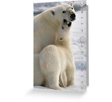 Polar Love - Christmas Card Greeting Card