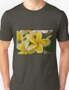 Another Yellow & White Fangipani Unisex T-Shirt