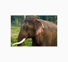 Asian Elephant (Elephas maximus) Unisex T-Shirt