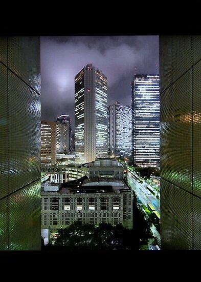 Shades of Bladerunner: Shinjuku, Tokyo by Alfie Goodrich