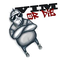 VIM or Die Photographic Print