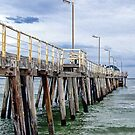 Henley Jetty by Cathie Tranent
