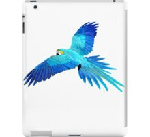 blue flight iPad Case/Skin