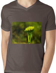 Bloom time Mens V-Neck T-Shirt