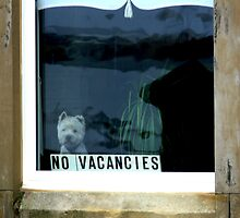 No Vacancies - Saltcoats, Scotland by outsider