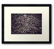 Nothing ever stays the same Framed Print