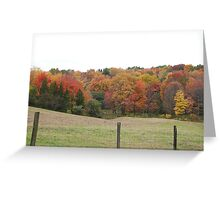 Cow Pasture Greeting Card