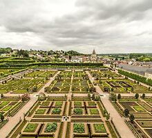 Gardens at Chateau de Villandry, France #3 by Elaine Teague