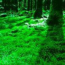 green by Amagoia  Akarregi