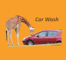 Car Wash!!!! by Anne-Marie Bokslag