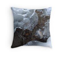 Icy Creek in Pocono Mountains Throw Pillow