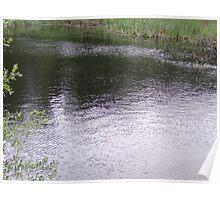 waterside Poster