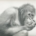 concentration by Samantha Norbury