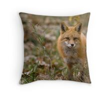 Red As Camoflage? Throw Pillow
