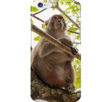 Monkey Island iPhone Case/Skin
