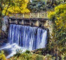 Autumn Waterfall Bridge by Ian Mitchell