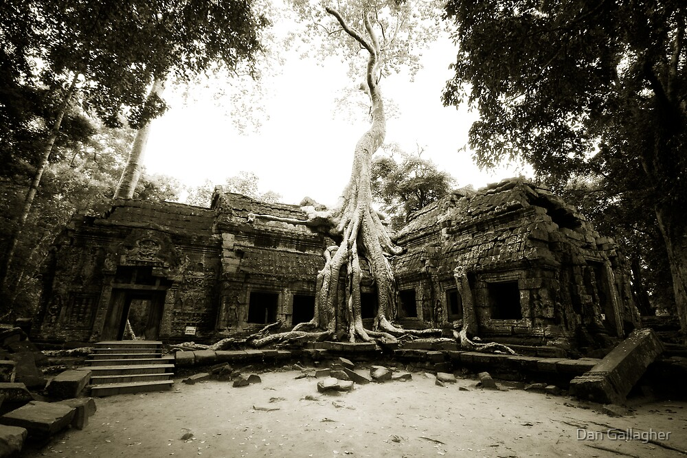 Temple at Angkor by Dan Gallagher