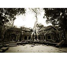 Temple at Angkor Photographic Print